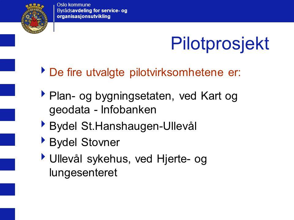 Pilotprosjekt De fire utvalgte pilotvirksomhetene er: