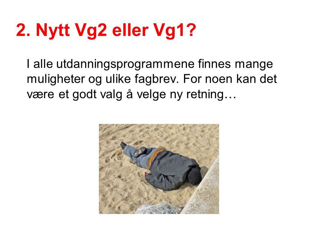 2. Nytt Vg2 eller Vg1