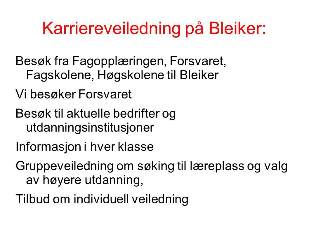 Karriereveiledning på Bleiker: