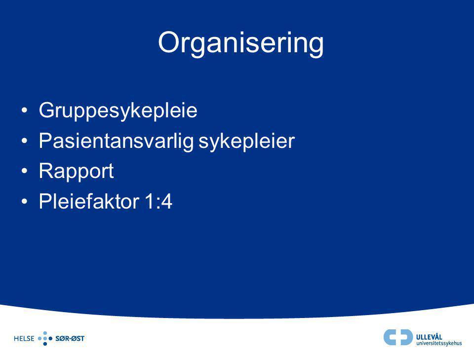 Organisering Gruppesykepleie Pasientansvarlig sykepleier Rapport