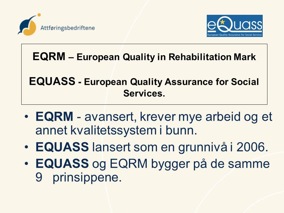 EQRM - avansert, krever mye arbeid og et annet kvalitetssystem i bunn.