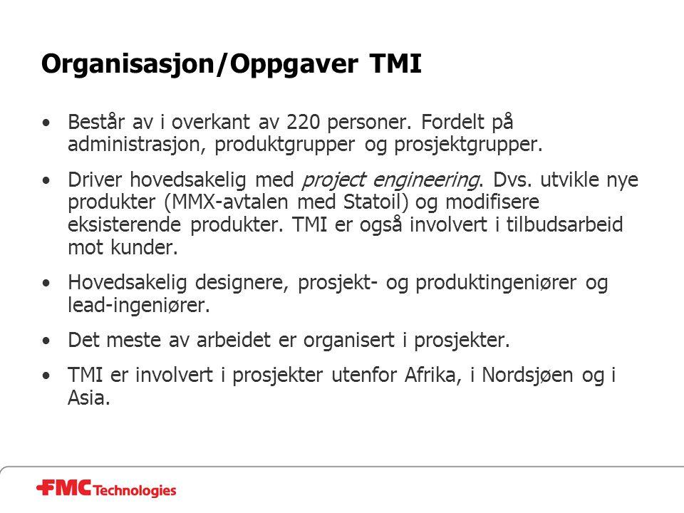 Organisasjon/Oppgaver TMI