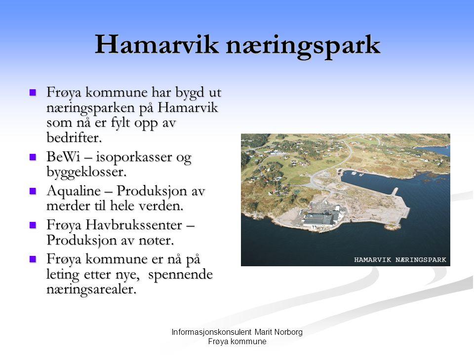 Informasjonskonsulent Marit Norborg Frøya kommune