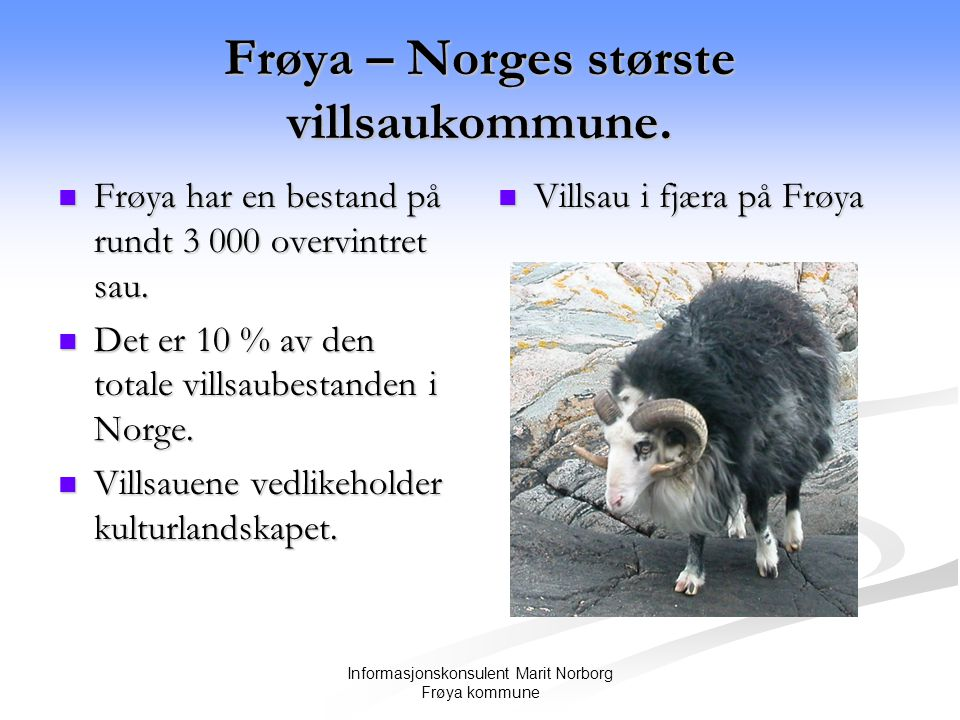 Frøya – Norges største villsaukommune.