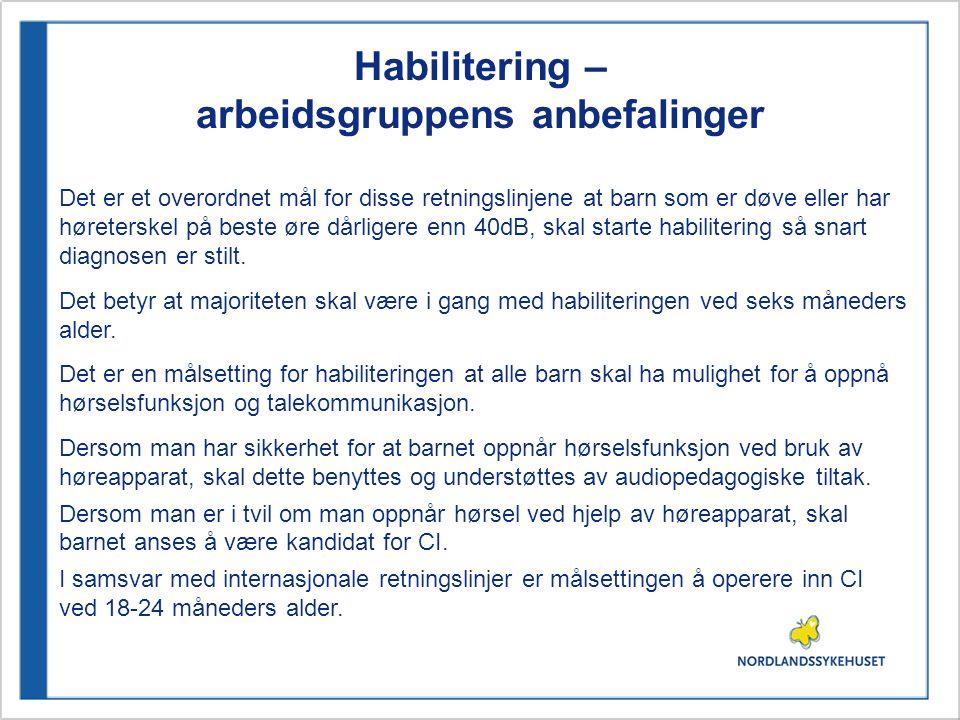 Habilitering – arbeidsgruppens anbefalinger