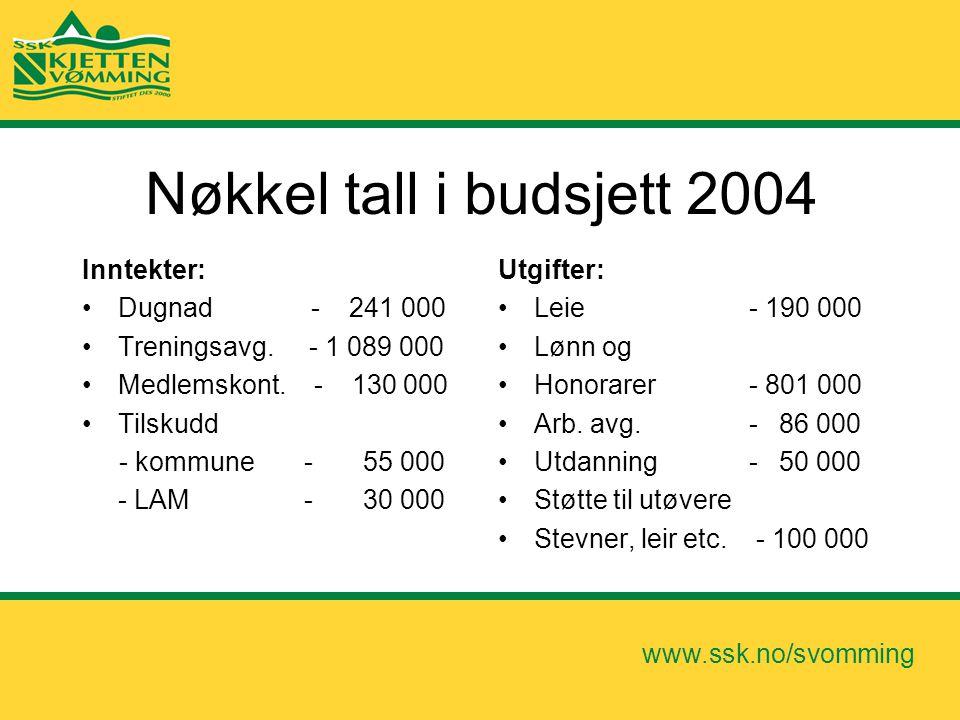 Nøkkel tall i budsjett 2004 Inntekter: Dugnad - 241 000