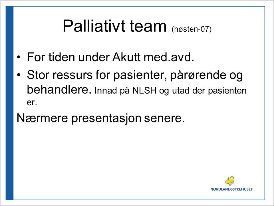 Palliativt team (høsten-07)
