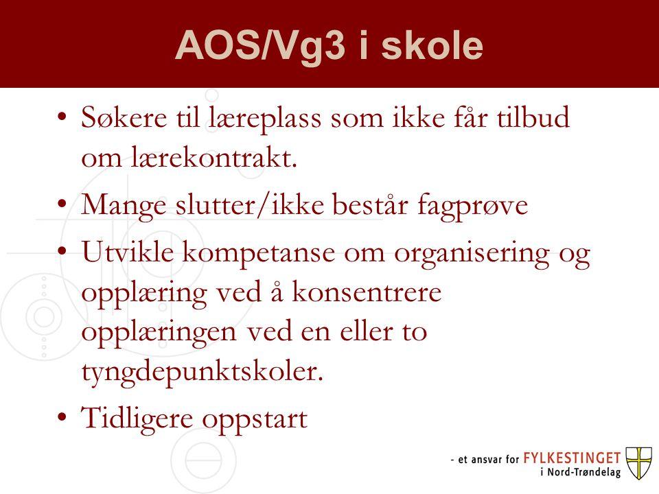 AOS/Vg3 i skole Søkere til læreplass som ikke får tilbud om lærekontrakt. Mange slutter/ikke består fagprøve.