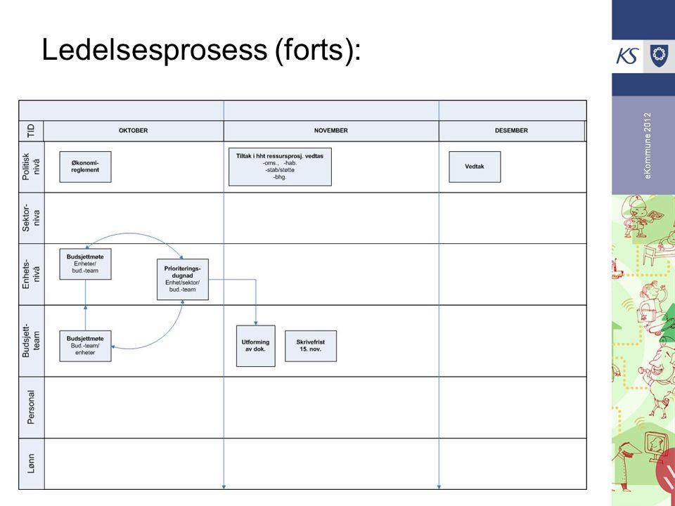 Ledelsesprosess (forts):