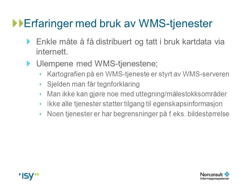 Erfaringer med bruk av WMS-tjenester