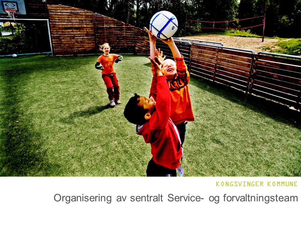 Organisering av sentralt Service- og forvaltningsteam