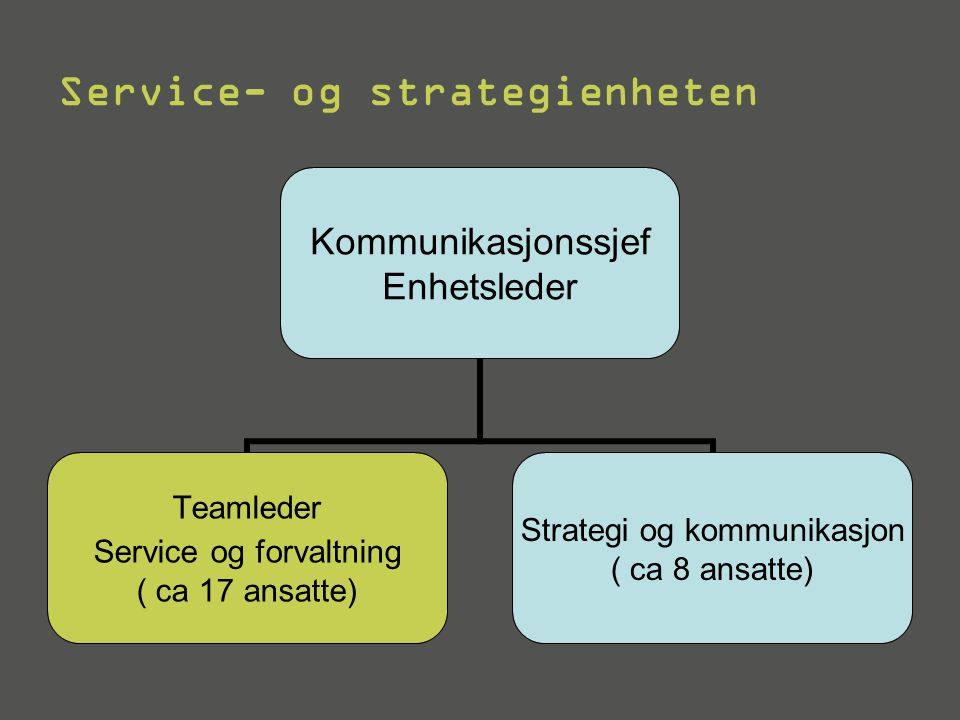 Service- og strategienheten