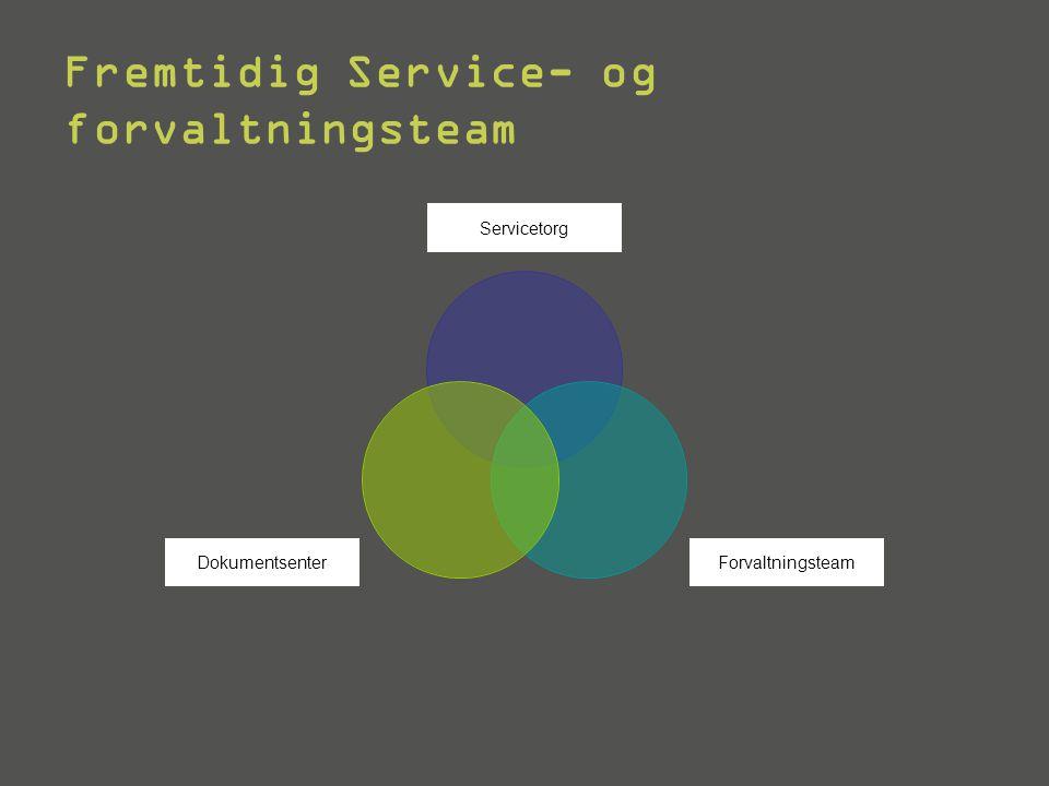 Fremtidig Service- og forvaltningsteam