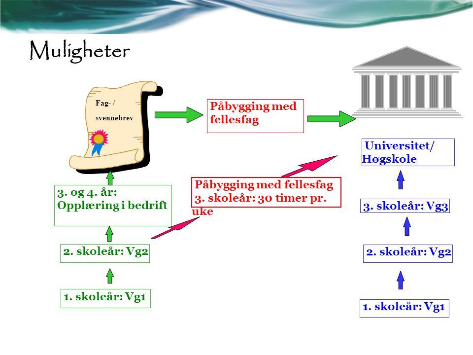 Muligheter Påbygging med fellesfag Universitet/ Høgskole