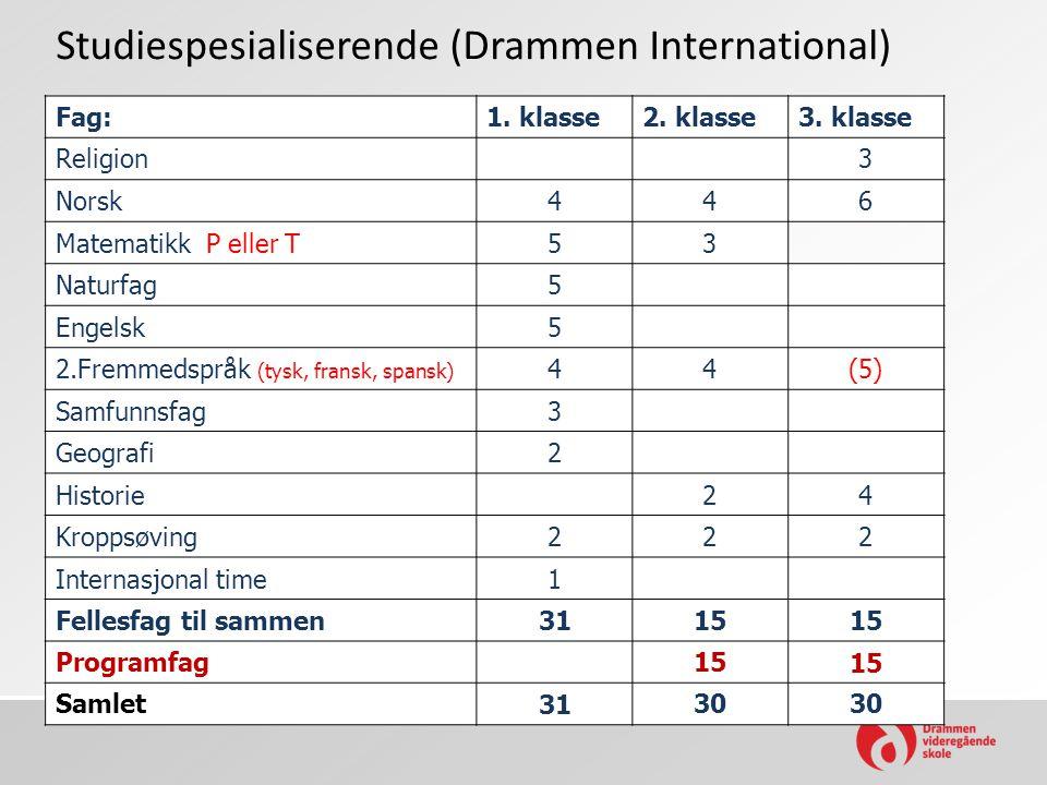 Studiespesialiserende (Drammen International)