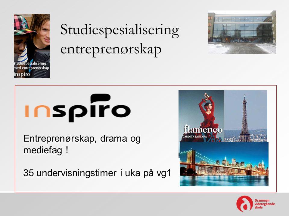 Studiespesialisering entreprenørskap