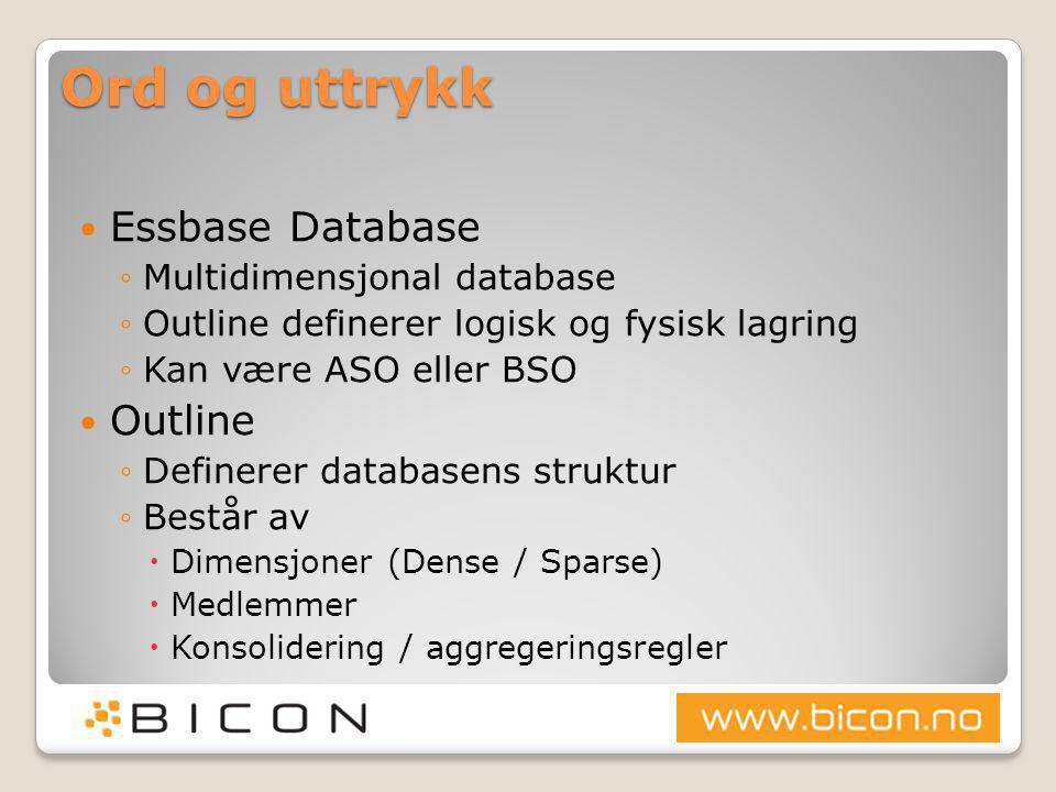 Ord og uttrykk Essbase Database Outline Multidimensjonal database