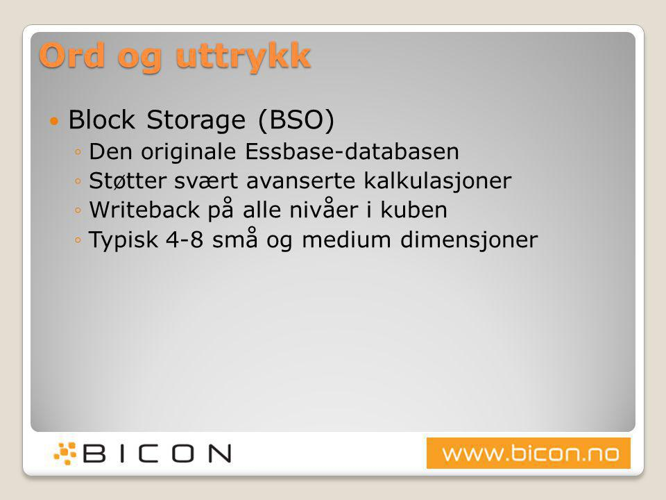 Ord og uttrykk Block Storage (BSO) Den originale Essbase-databasen