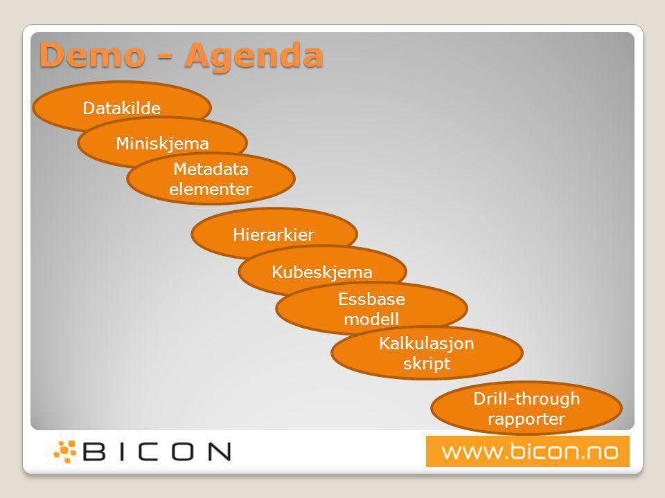 Demo - Agenda Datakilde Miniskjema Metadata elementer Hierarkier