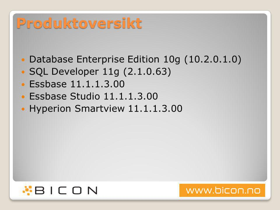 Produktoversikt Database Enterprise Edition 10g (10.2.0.1.0)