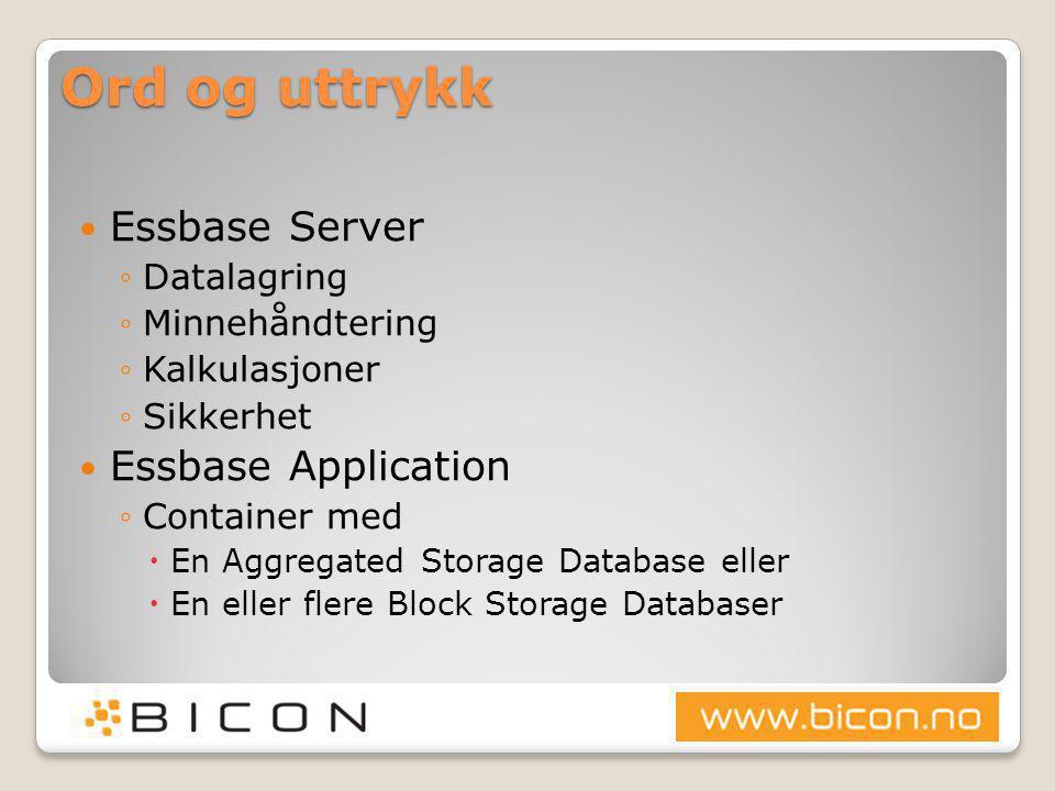 Ord og uttrykk Essbase Server Essbase Application Datalagring