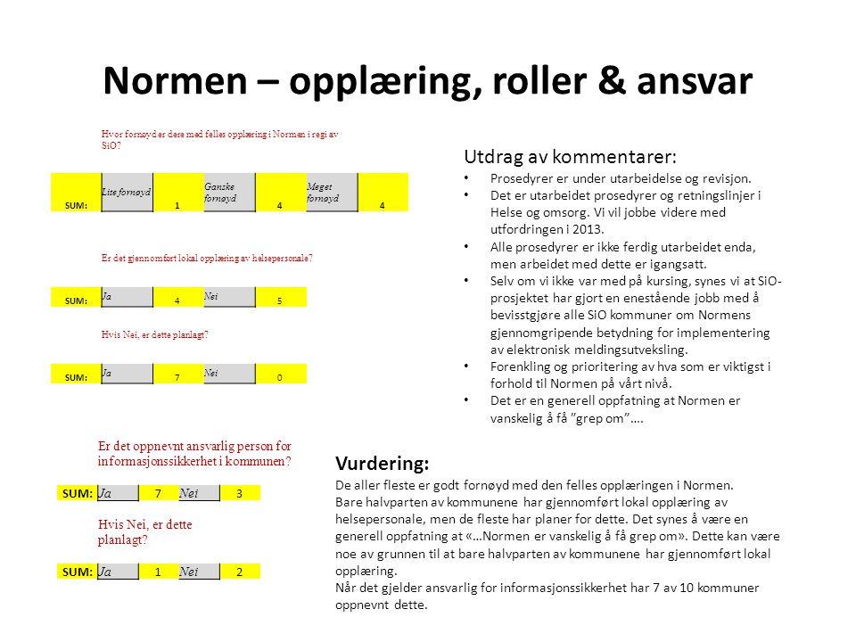 Normen – opplæring, roller & ansvar