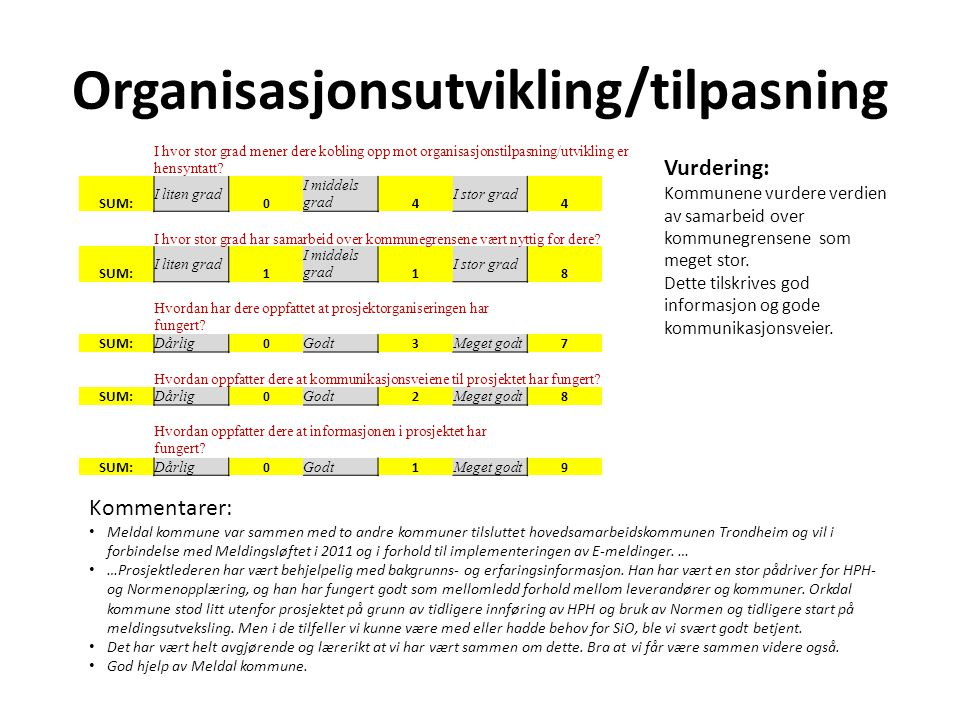 Organisasjonsutvikling/tilpasning