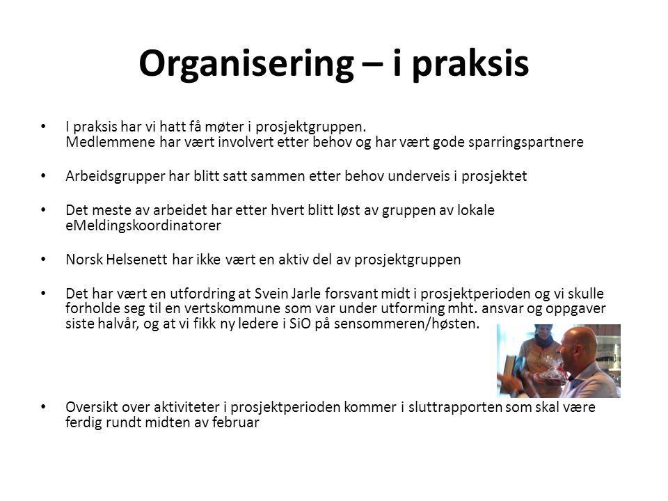 Organisering – i praksis