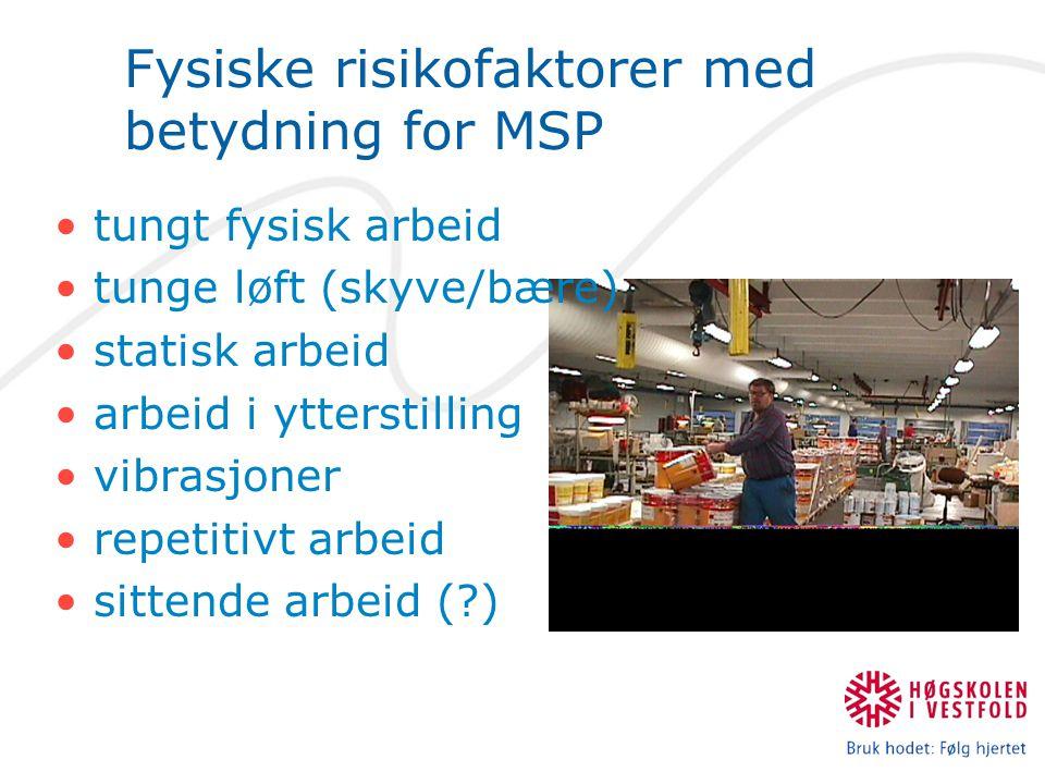 Fysiske risikofaktorer med betydning for MSP