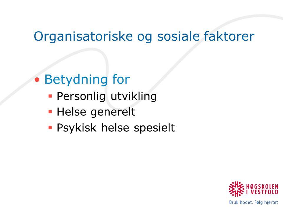 Organisatoriske og sosiale faktorer