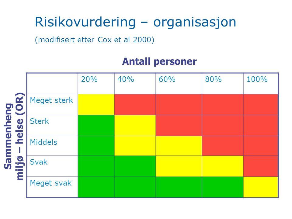 Risikovurdering – organisasjon (modifisert etter Cox et al 2000)