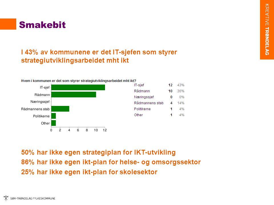 Smakebit I 43% av kommunene er det IT-sjefen som styrer