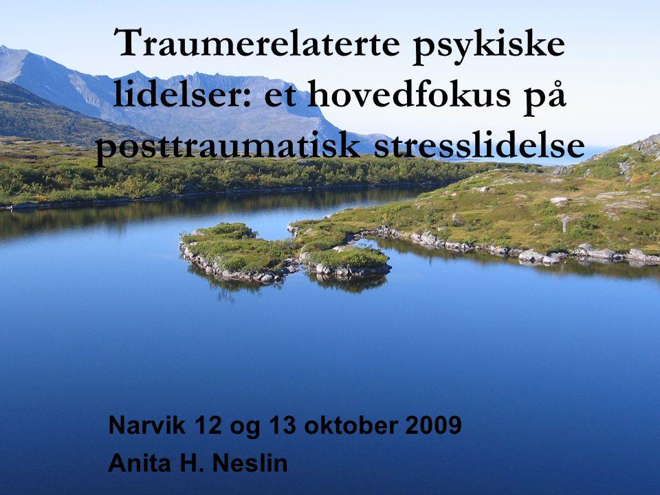 Narvik 12 og 13 oktober 2009 Anita H. Neslin