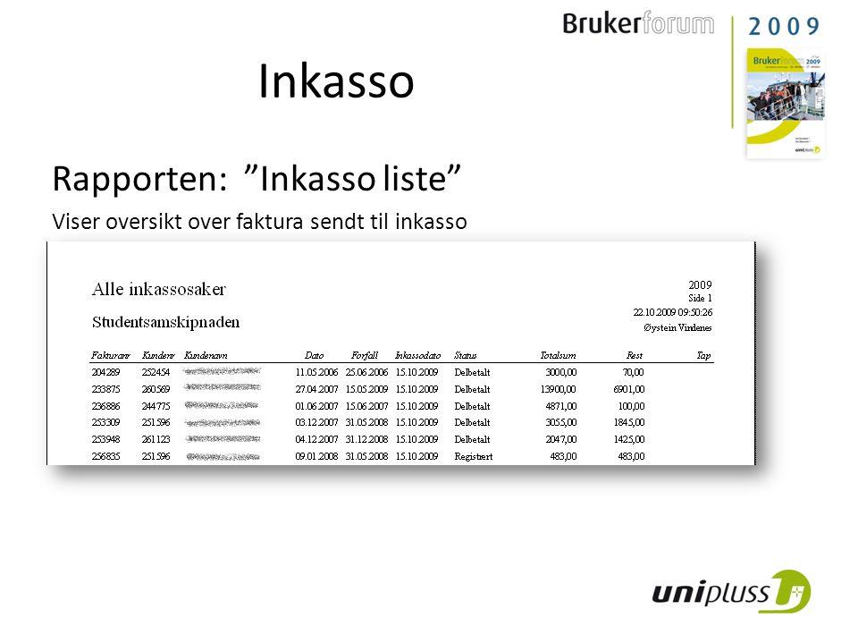 Inkasso Rapporten: Inkasso liste