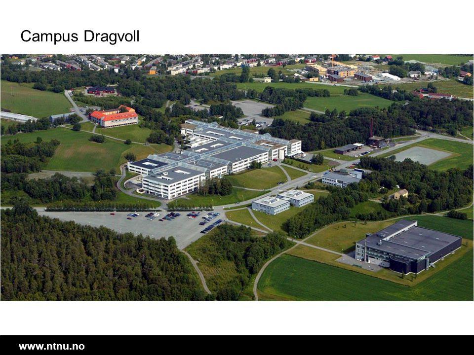 Campus Dragvoll NTNUs andre hovedcampus. Her er de humanistiske og samfunnsvitenskaplige programmene.