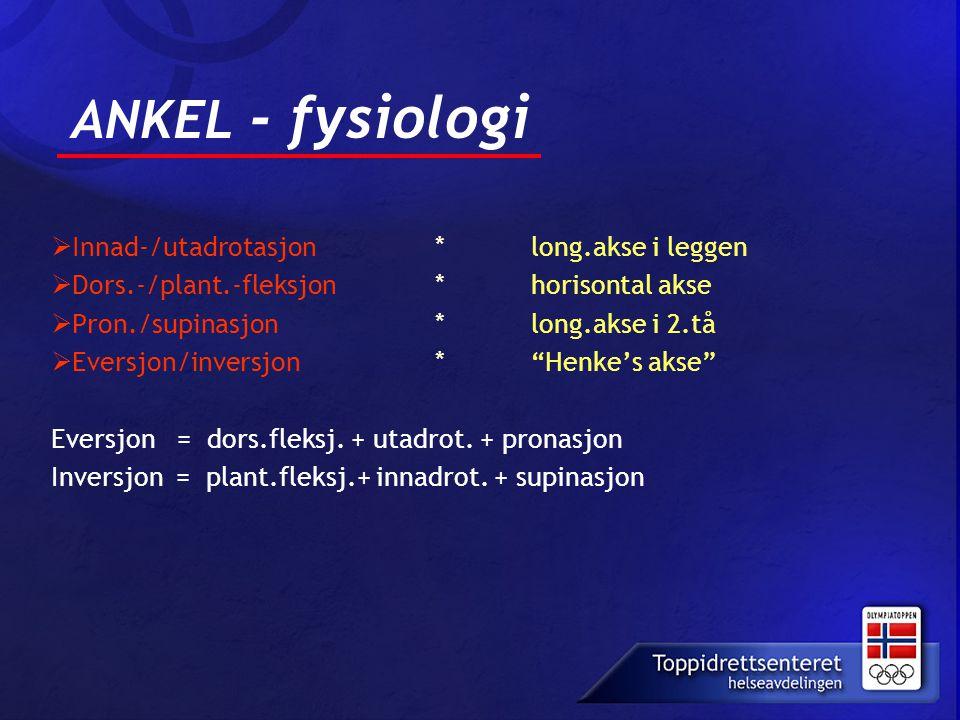 ANKEL - fysiologi Innad-/utadrotasjon * long.akse i leggen
