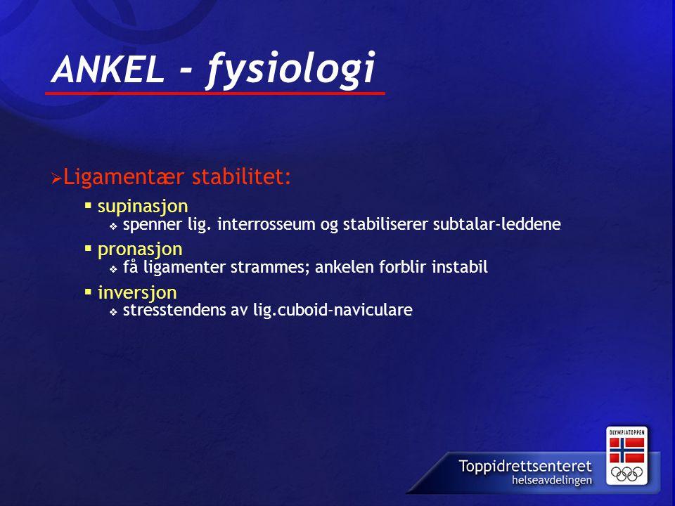 ANKEL - fysiologi supinasjon pronasjon inversjon