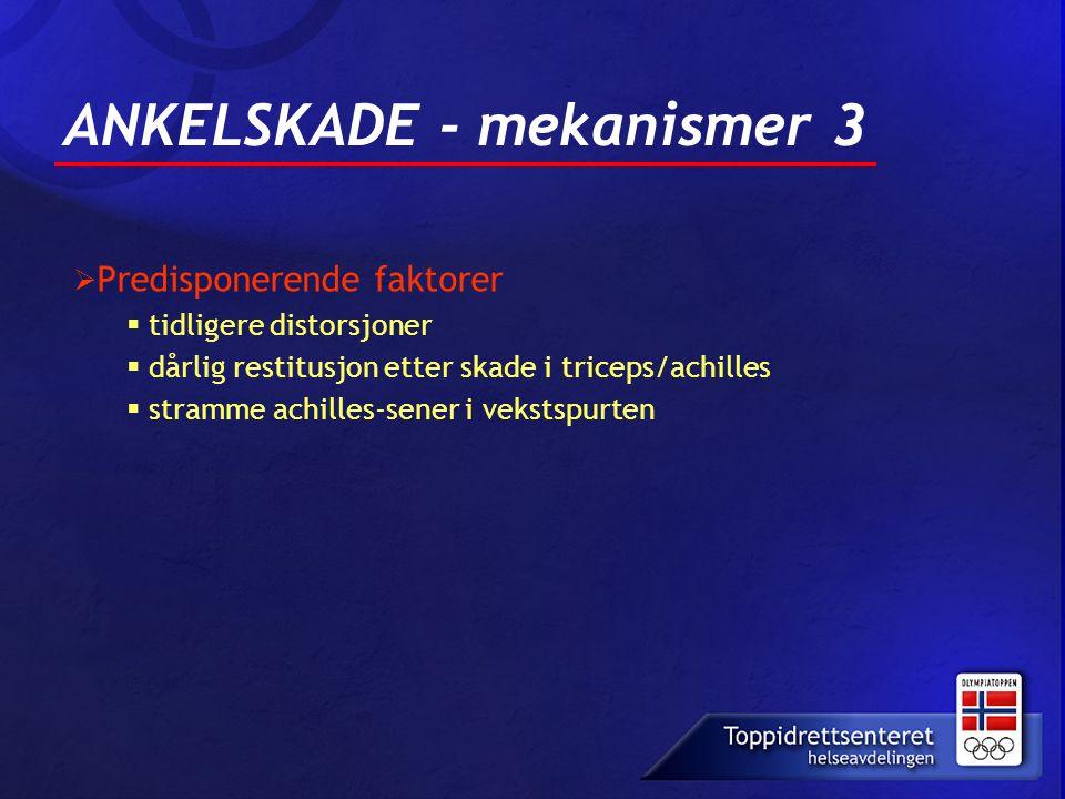 ANKELSKADE - mekanismer 3