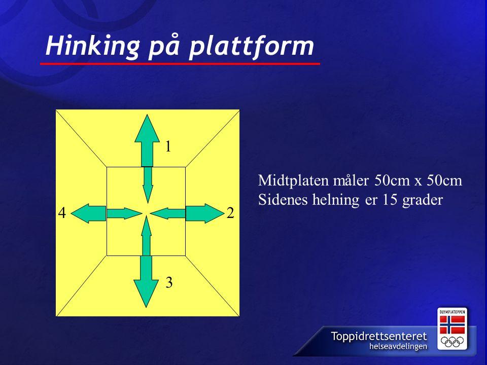 Hinking på plattform 1 Midtplaten måler 50cm x 50cm