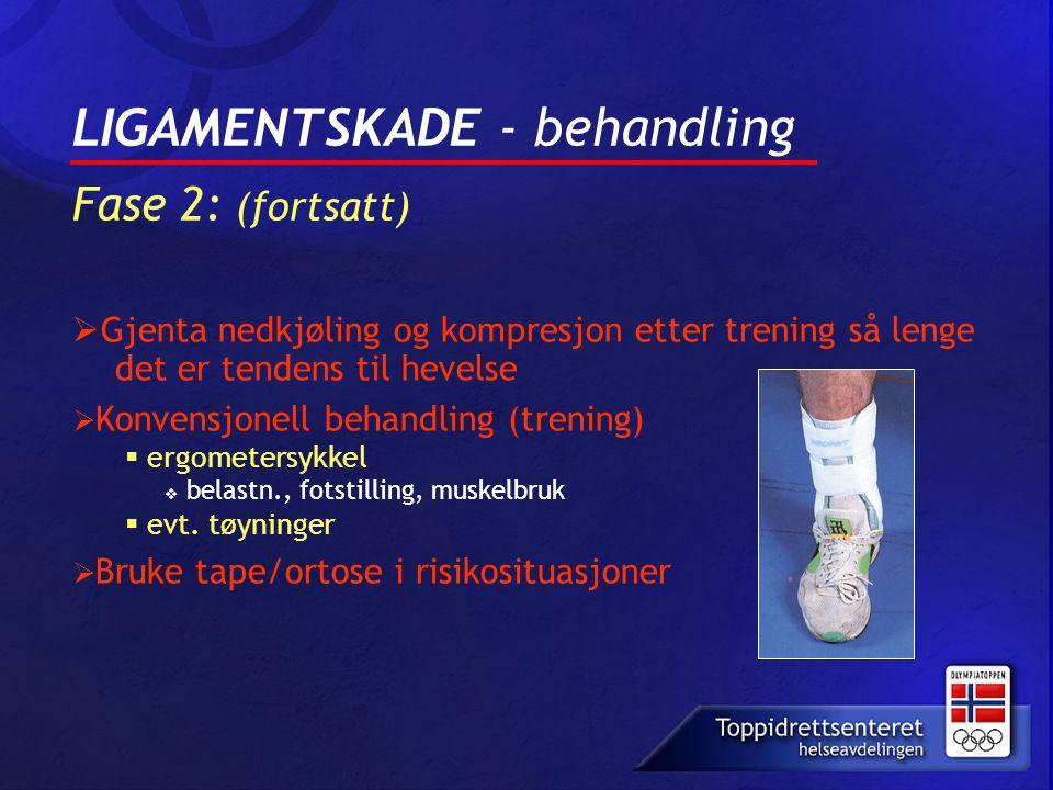 LIGAMENTSKADE - behandling Fase 2: (fortsatt)
