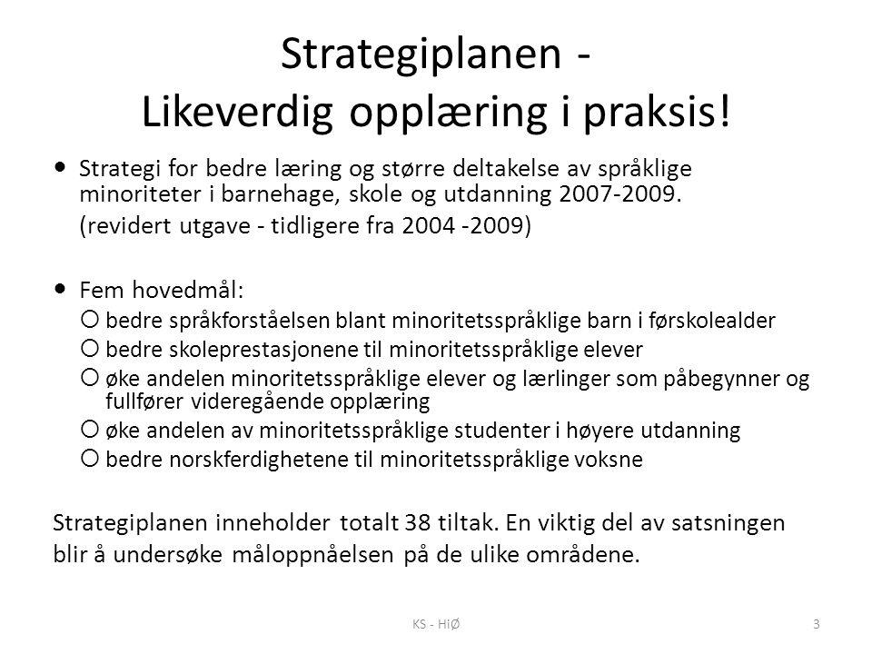 Strategiplanen - Likeverdig opplæring i praksis!