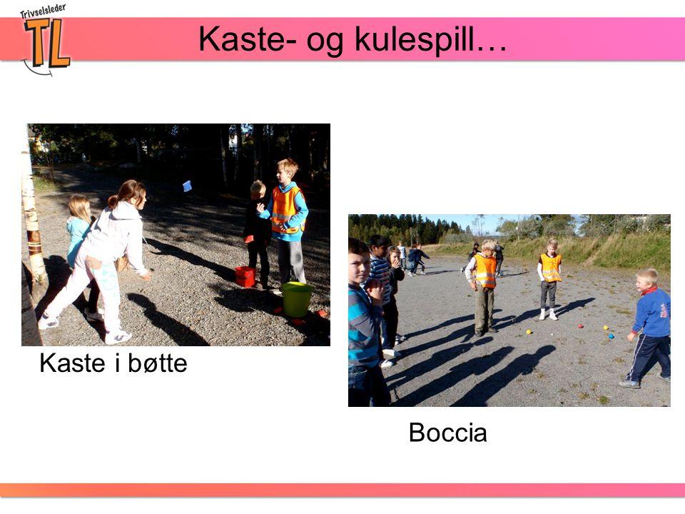 Kaste- og kulespill… Kaste i bøtte Boccia