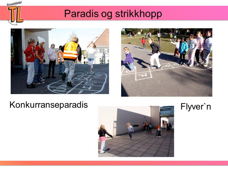 Paradis og strikkhopp Konkurranseparadis Flyver`n