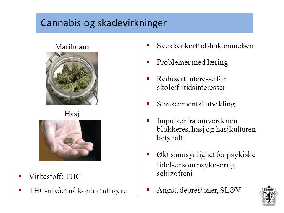 Cannabis og skadevirkninger