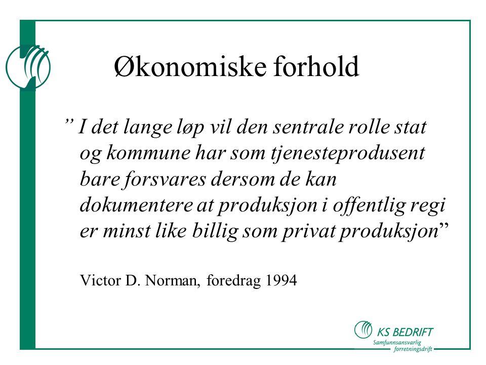 Økonomiske forhold