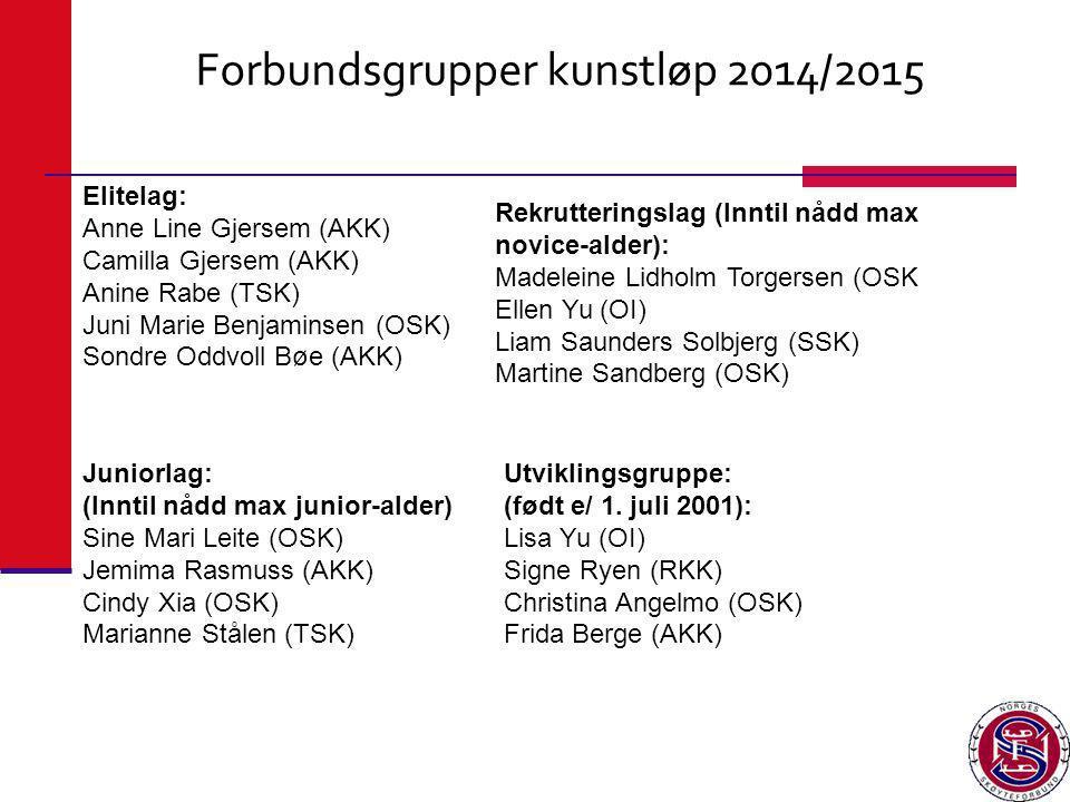 Forbundsgrupper kunstløp 2014/2015