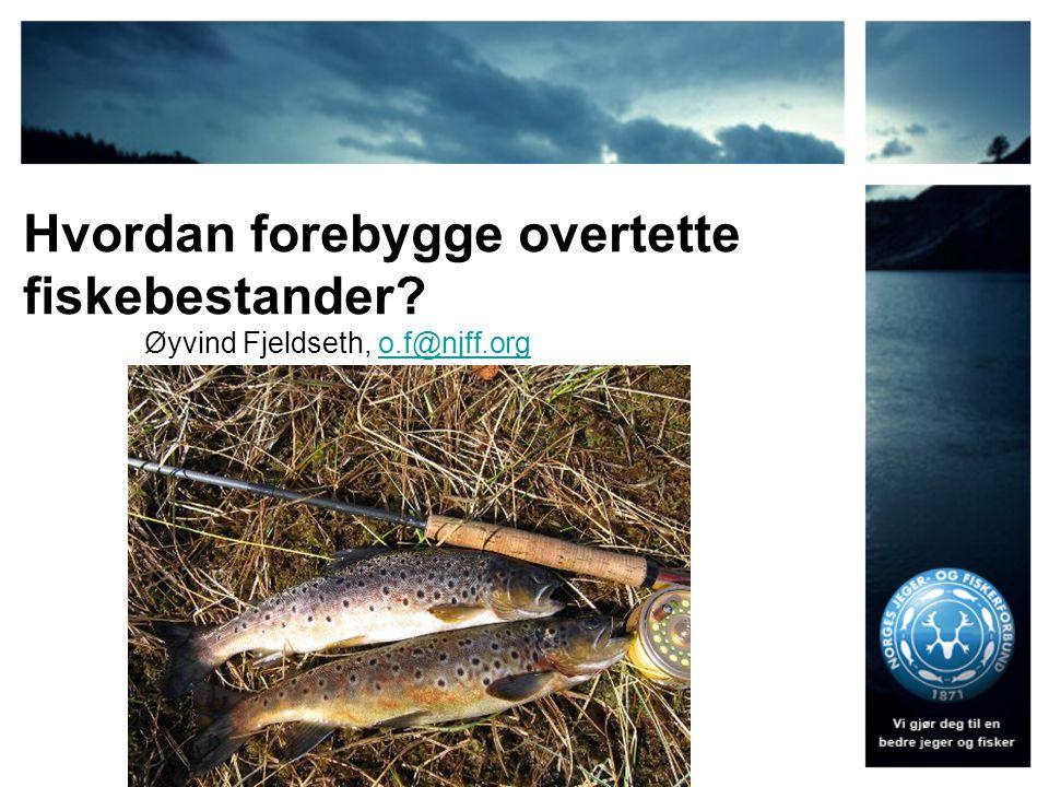 Hvordan forebygge overtette fiskebestander