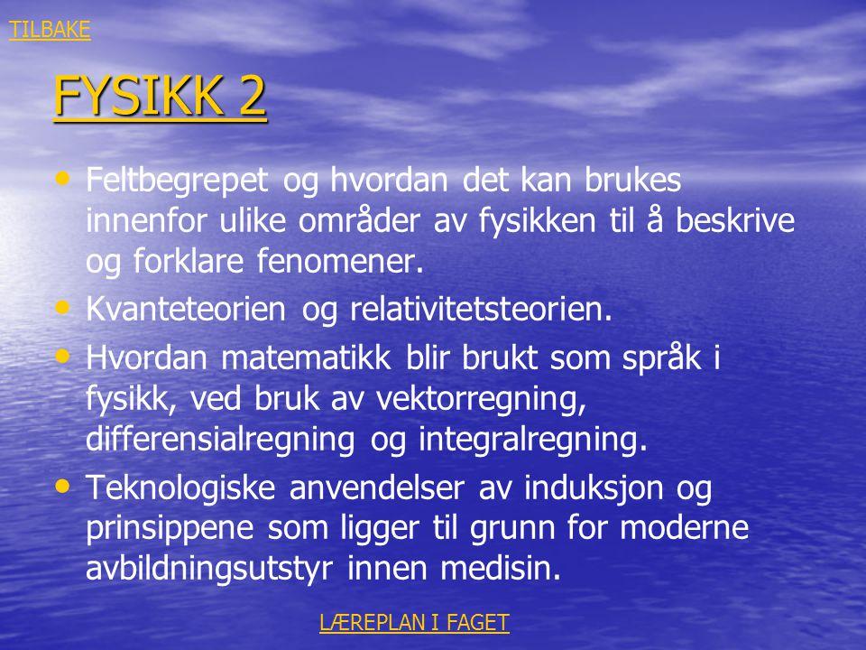 TILBAKE FYSIKK 2. Feltbegrepet og hvordan det kan brukes innenfor ulike områder av fysikken til å beskrive og forklare fenomener.