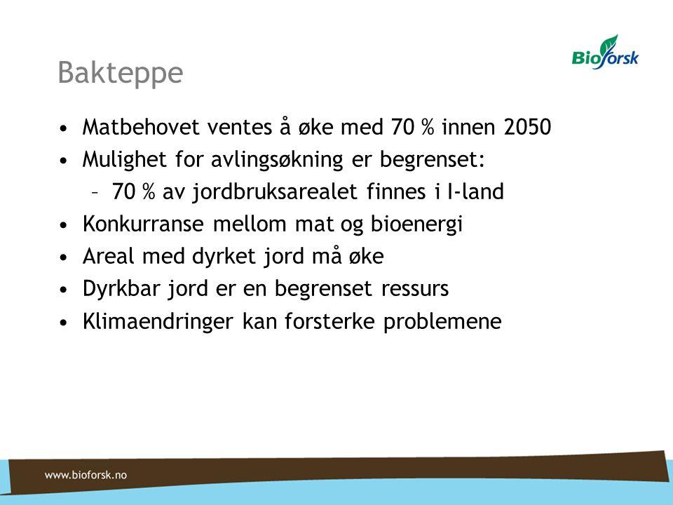 Bakteppe Matbehovet ventes å øke med 70 % innen 2050