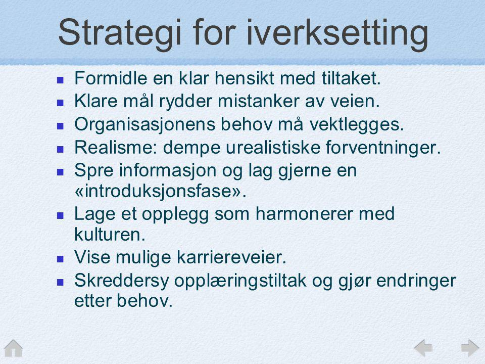 Strategi for iverksetting